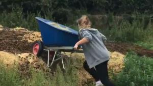 Wheelbarrow With Dung Fail